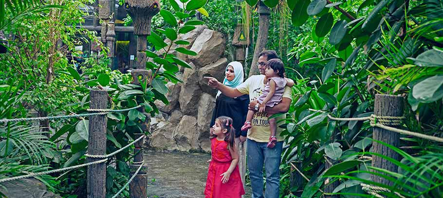 Rainforest Theme Restaurant in Muscat | The Jungle